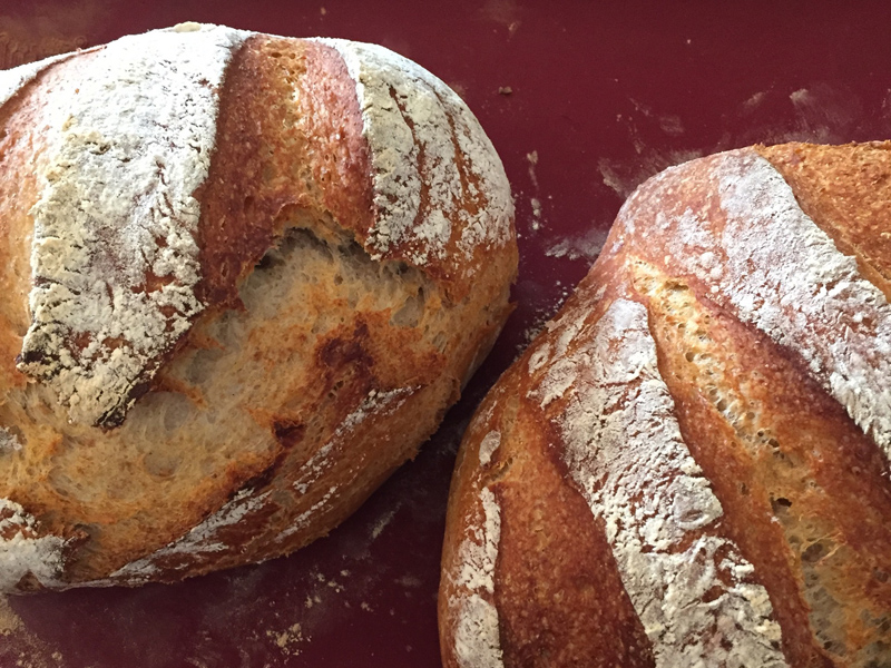 The first sourdough loaves of the season, fresh from the oven | Photo: Frances Vettergreen