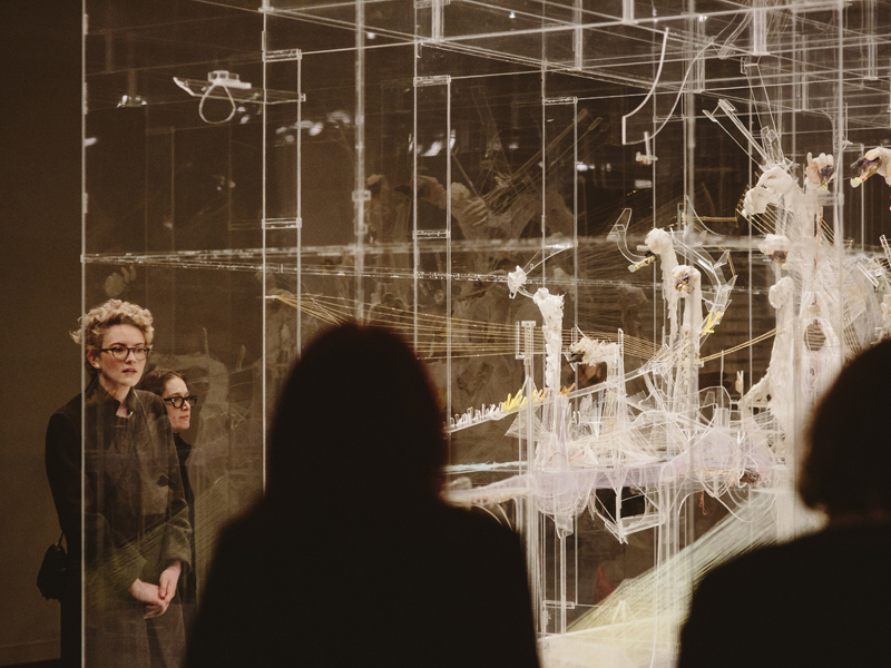 Glenbow visitors take in David Altmejd's The Vessel