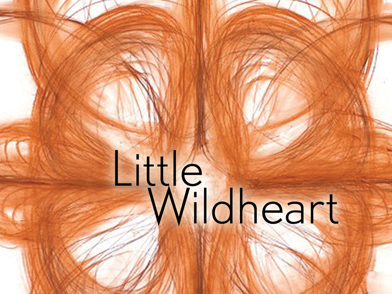 Cover of Micheline Maylor's Little Wildheart