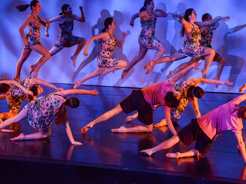Promo image - The Performing and Visual Arts Program (PVA) at Central Memorial High School