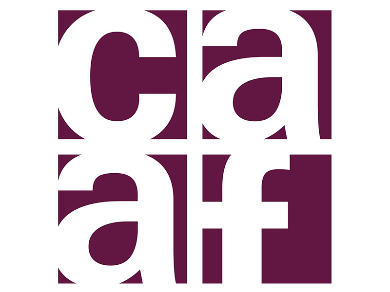 Image Logo - Calgary Allied Arts Foundation