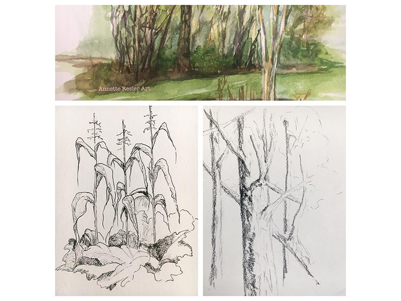 An image of three plein air sketches