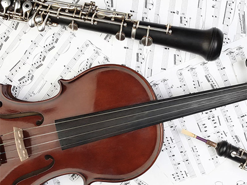 A stock photo of a violin and oboe