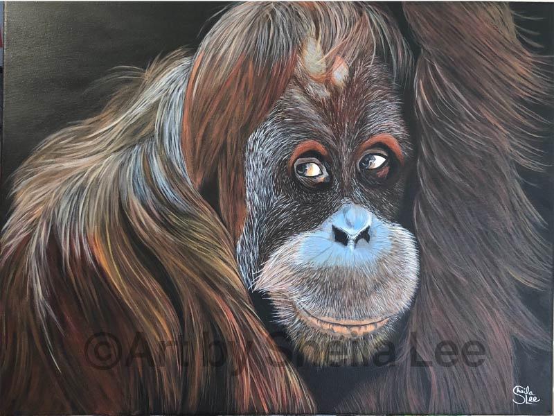 An of a painting of an orangutan by Sheila Lee