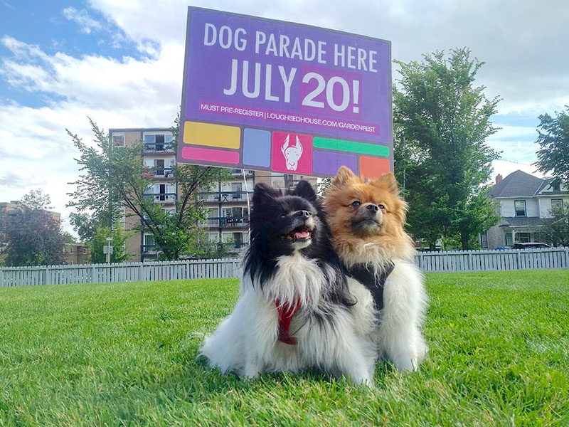 Two small dogs and a sign that says, dog parade here, July 20