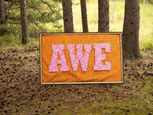 A photo of a sign that says AWE in the woods
