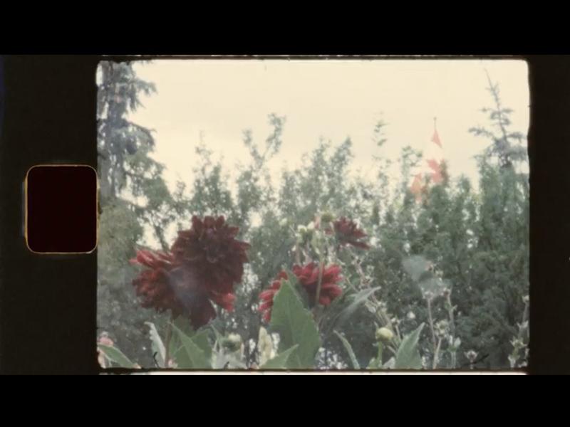 A frame from Chantal Snodgrass: Recent Work