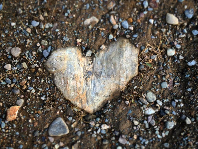 A photo of rock peaking through the ground in the shape of a heart by Barb Briggs