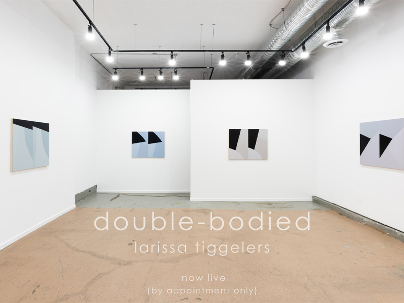 A photo of double-bodied on display at Jarvis Hall Gallery