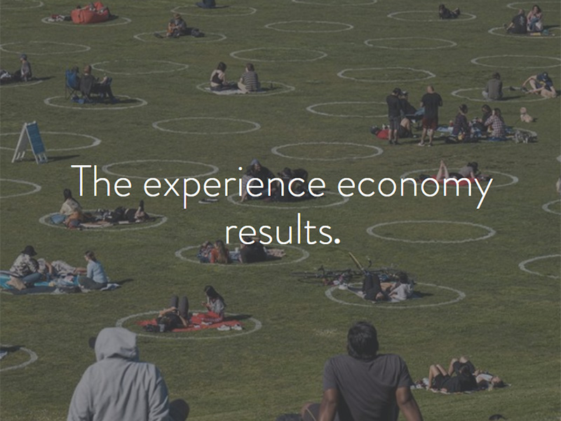 """A graphic with the words """"the expereince economy results"""""""