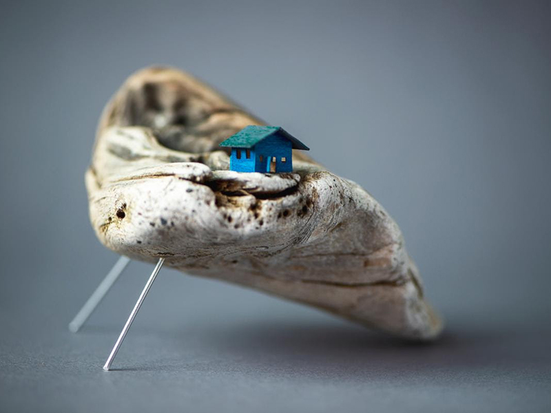 A little house sits on a piece of driftwood in this piece by Julya Hajnoczky