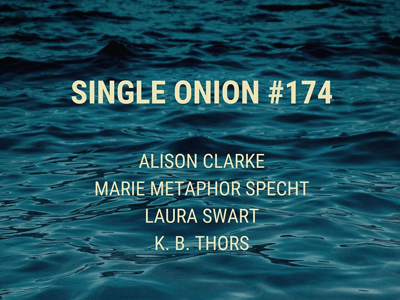 A graphic for Single Onion #174