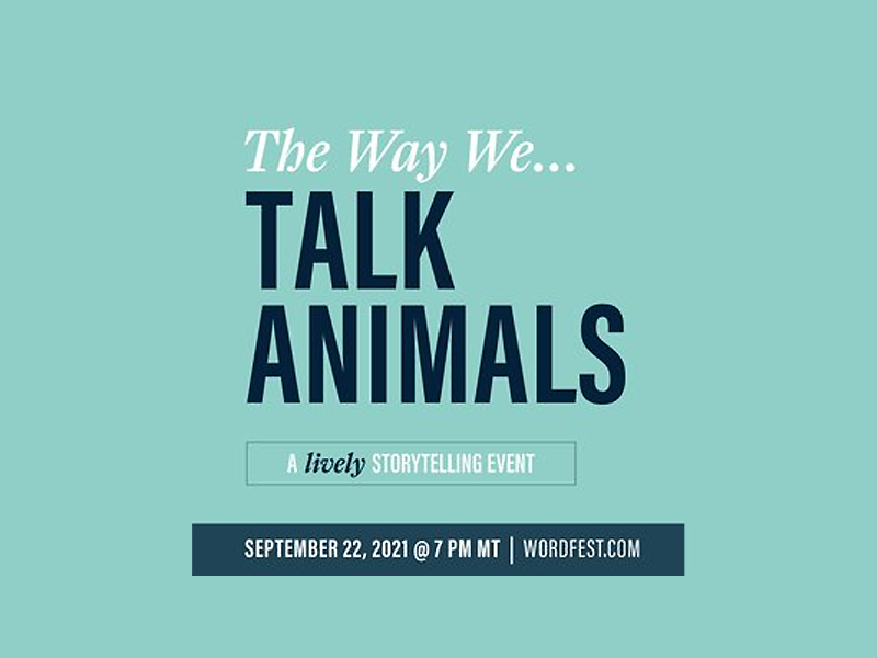 Text for Talk Animals on a blue background